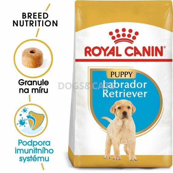 royal canin labrador retriever puppy. Black Bedroom Furniture Sets. Home Design Ideas